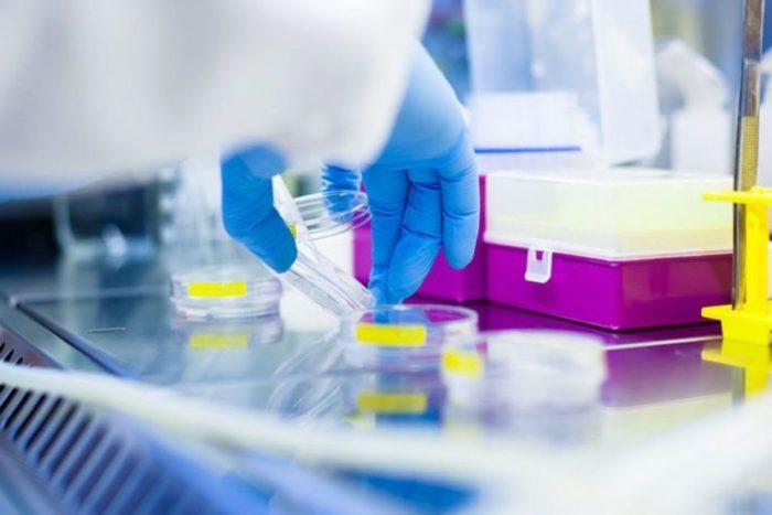 Лечение алопеции миноксидилом у женщин_лаборатория